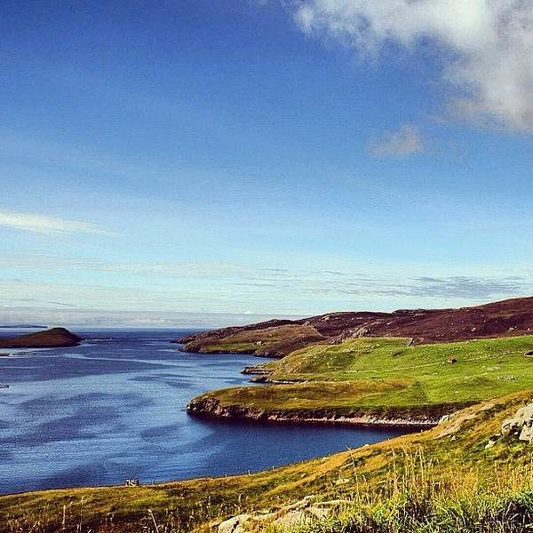 Iclandscapes Poster featuring the photograph Shetland Islands - Scotland by Luisa Azzolini
