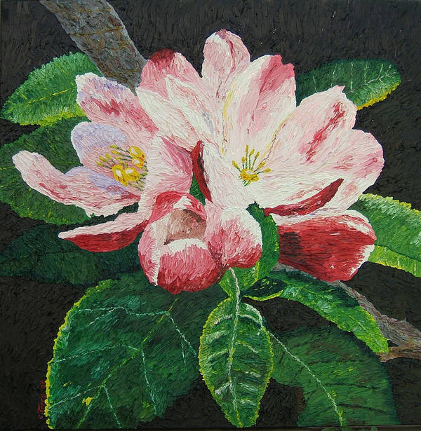 Flowers Poster featuring the painting Apple Blossoms by Chris Torre