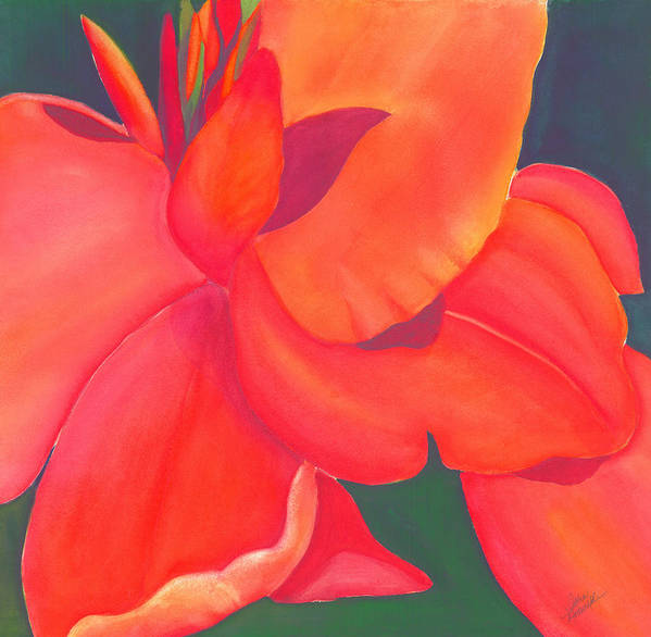Watercolor Poster featuring the painting Canna Lily by Debbra Nodwell-Bender