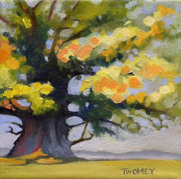 Oak Poster featuring the painting Earlysville Virginia Ancient White Oak by Catherine Twomey