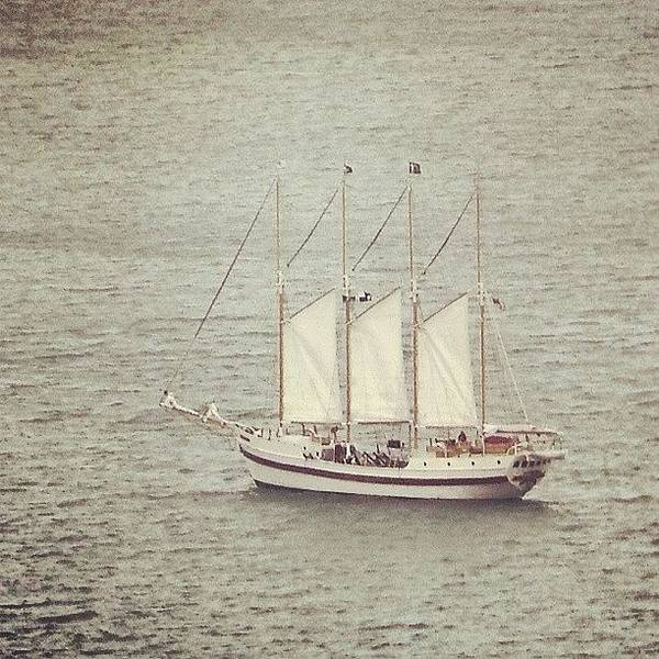 Ship Poster featuring the photograph Gray Day And A Tall Ship by Jill Tuinier