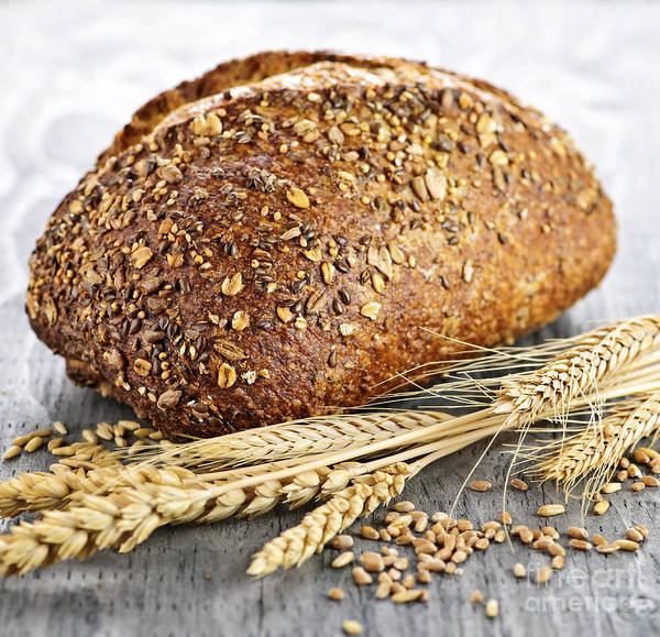 Bread Poster featuring the photograph Loaf Of Multigrain Bread by Elena Elisseeva