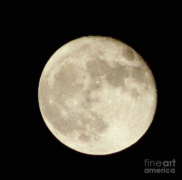 Moons Poster featuring the photograph Ninety-eight Percent Full by Ellen Ryan
