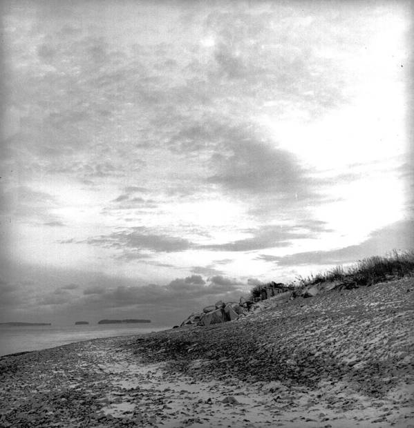 B&w Poster featuring the photograph November Dusk At Linwood's by Timothy Bischoff