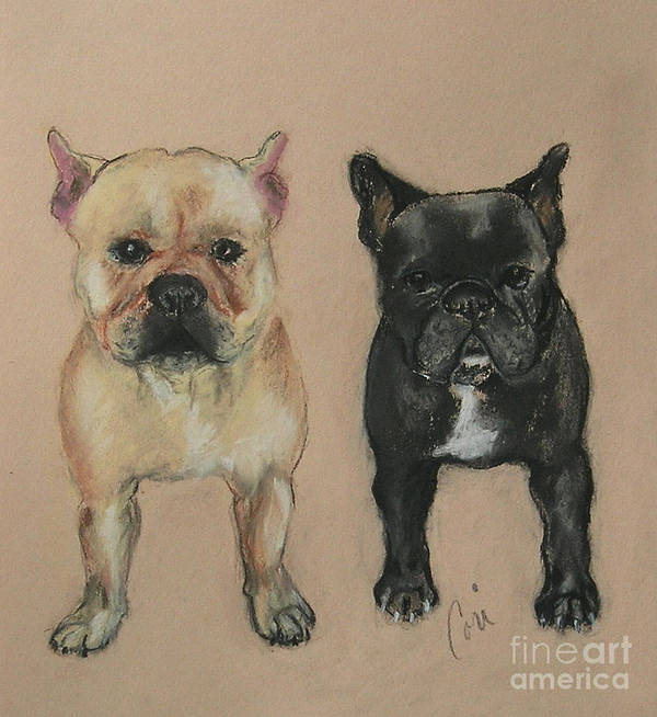 French Bulldog Poster featuring the pastel Pardon My French by Cori Solomon