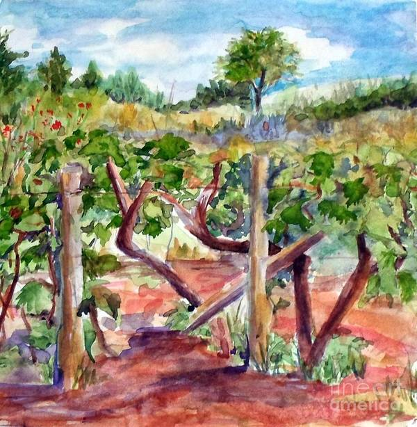 Vineyard Poster featuring the painting Sunny Grape Fields of Medjugorie by Vicki Housel