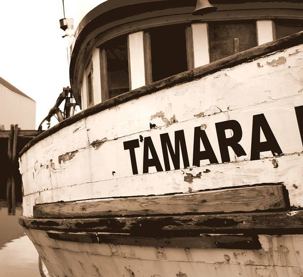 Boat Poster featuring the photograph Tamara by Mamie Gunning