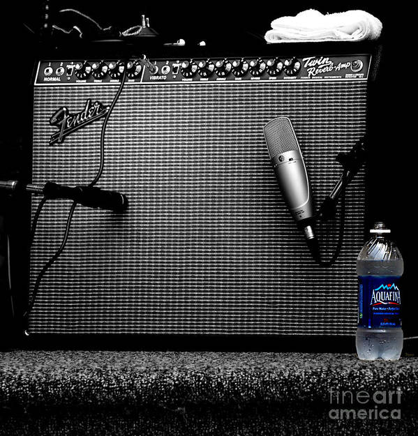Music Poster featuring the photograph The Thirst Of Sound by Steven Digman