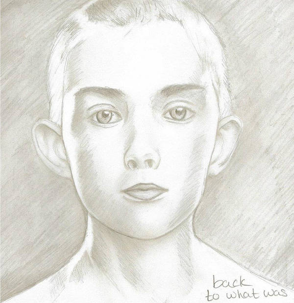 Boy Poster featuring the drawing Back To What Was by Raine Bryant