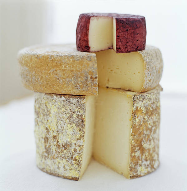 Cheese Poster featuring the photograph Cheese Selection by David Munns