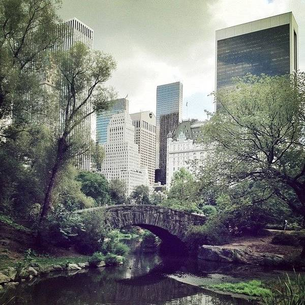 Summer Poster featuring the photograph Central Park by Randy Lemoine