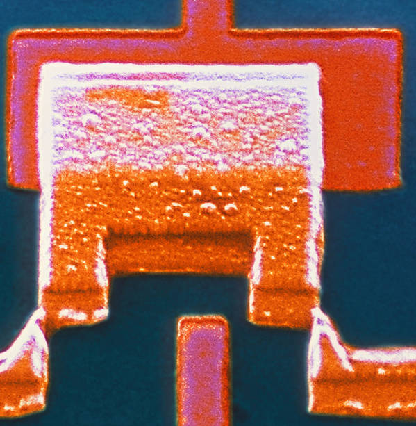 Transistor Poster featuring the photograph Coloured Sem Of A Single-electron Transistor by Volker Steger