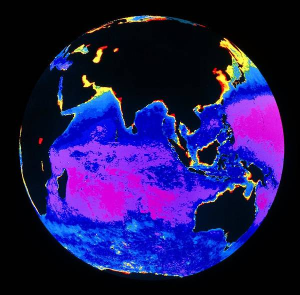 Phytoplankton Distribution Poster featuring the photograph False Colour Image Of The Indian Ocean by Dr Gene Feldman, Nasa Gsfc