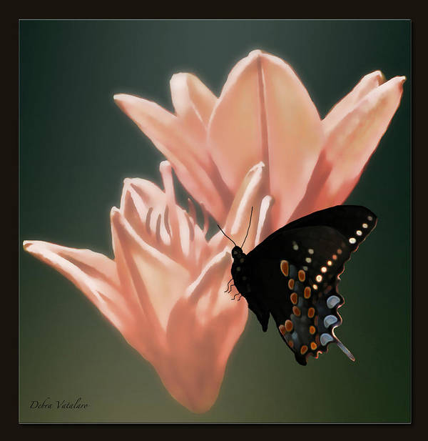 Floral Butterfly Dance Poster featuring the photograph Floral Butterfly Dance by Debra   Vatalaro