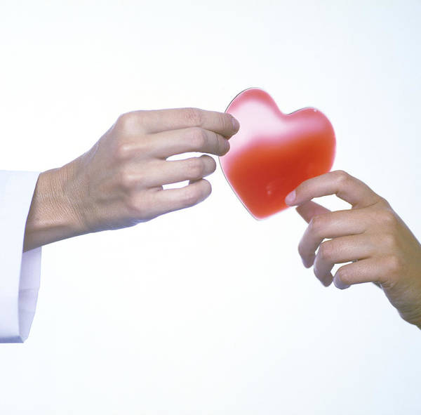 Hand Poster featuring the photograph Healthy Heart, Conceptual Image by Cristina Pedrazzini