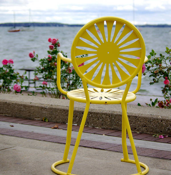Yellow Poster featuring the photograph Mellow Yellow by Linda Mishler