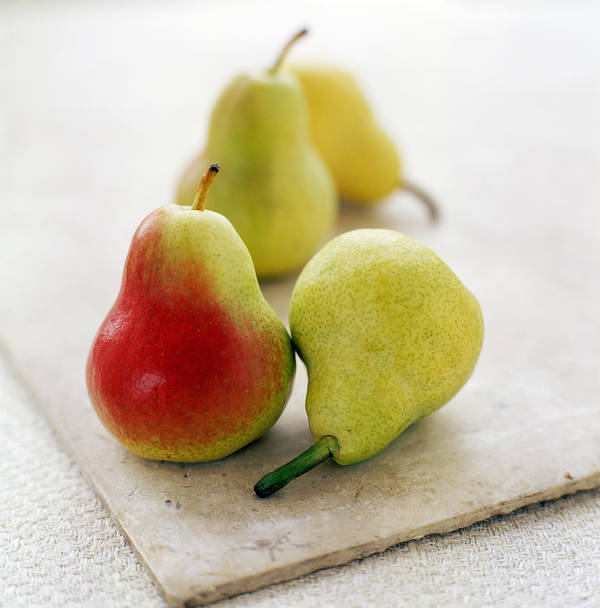 Pyrus Communis Poster featuring the photograph Pears by David Munns