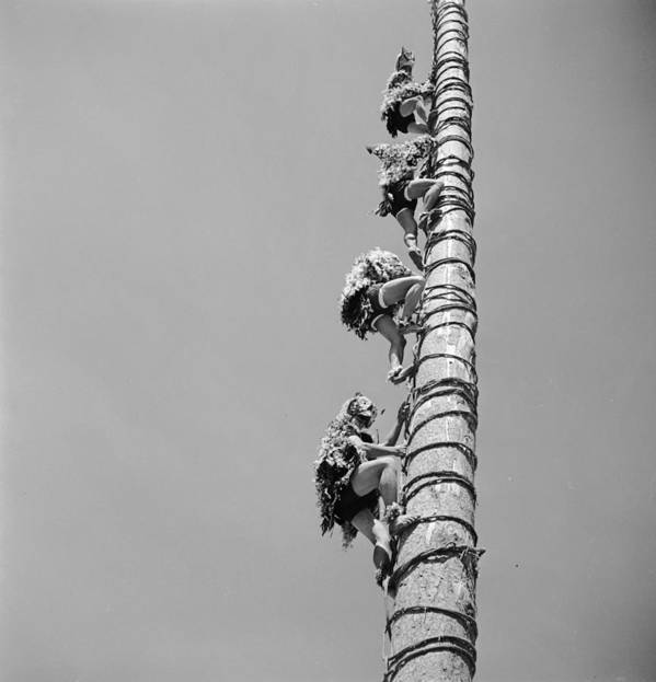 Adults Only Poster featuring the photograph Voladores Ascent by George Pickow