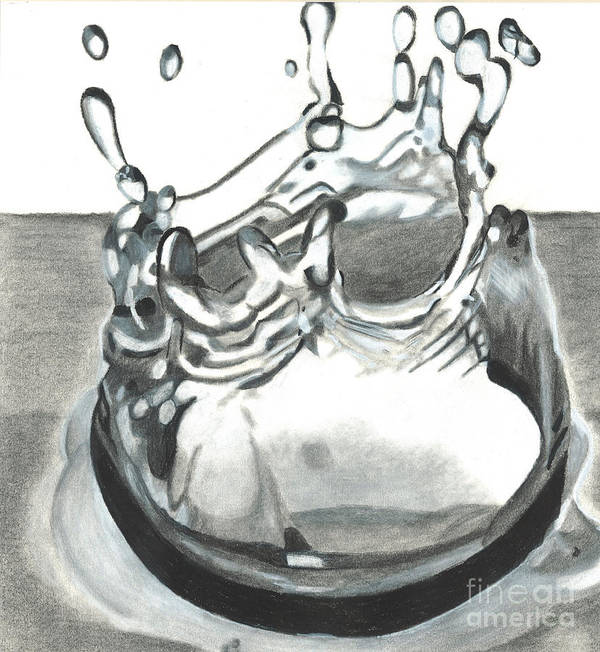 Water Poster featuring the drawing Water Drop by Martha Booysen