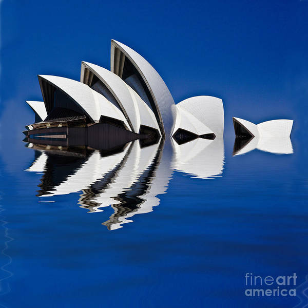 Sydney Opera House Poster featuring the photograph Abstract of Sydney Opera House by Sheila Smart Fine Art Photography