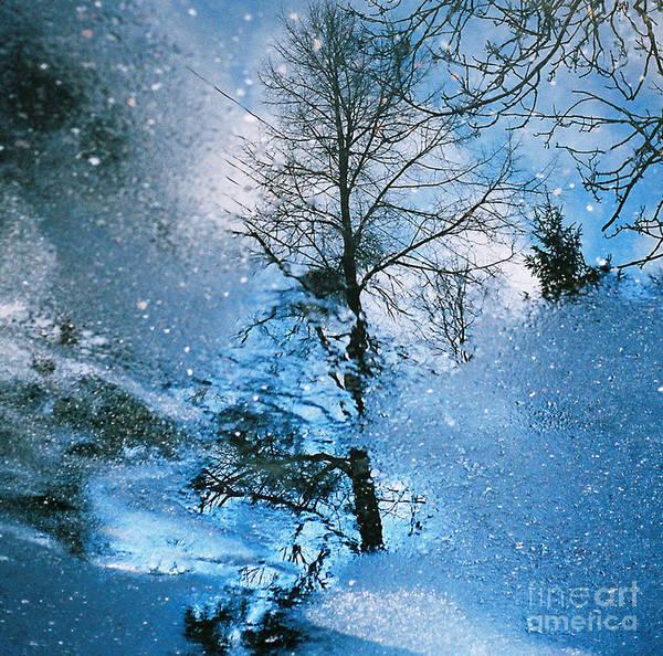 Blue Winter Poster featuring the photograph Blue Winter - From The Cycle - Straight From The Plate by Jolanta Kubica