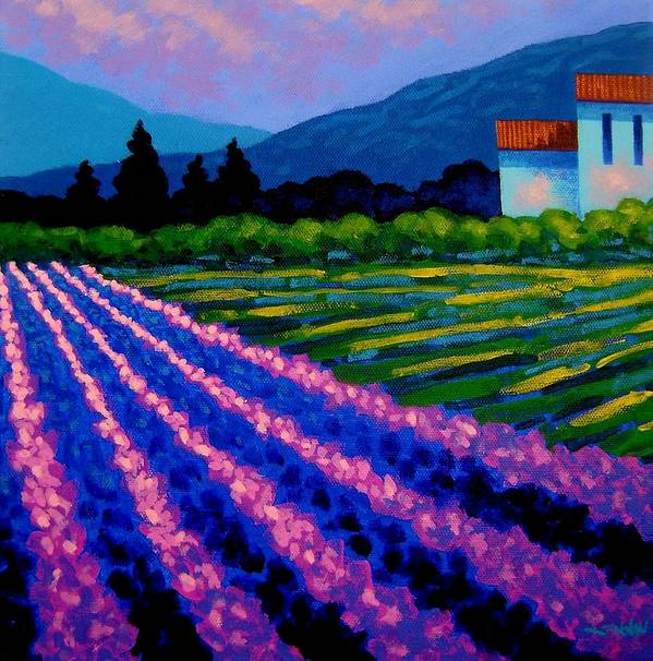 Landscape Poster featuring the painting Lavender Field France by John Nolan