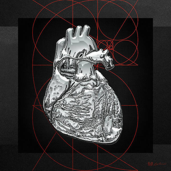�inner Workings� Collection By Serge Averbukh Poster featuring the photograph Silver Human Heart on Black Canvas by Serge Averbukh