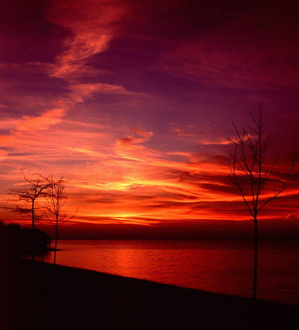 Sunsets Poster featuring the photograph 111701-25 by Mike Davis