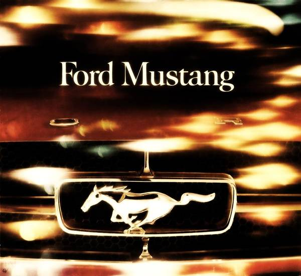 1964 Poster featuring the photograph 1964 Ford Mustang by R Muirhead Art
