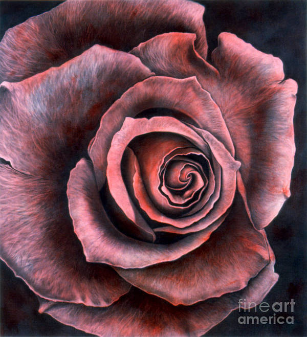 Realism Poster featuring the painting Red Rose by Lawrence Supino