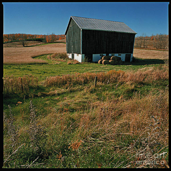 Landscape Country Autumn Fall Color Barn Poster featuring the photograph A Barn In Mid Autumn by Ty Lee