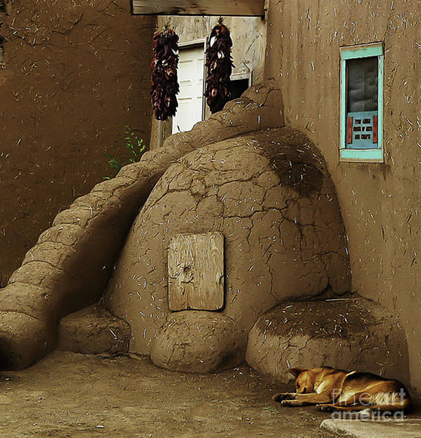 Oven Poster featuring the photograph Adobe Oven by Angela Wright