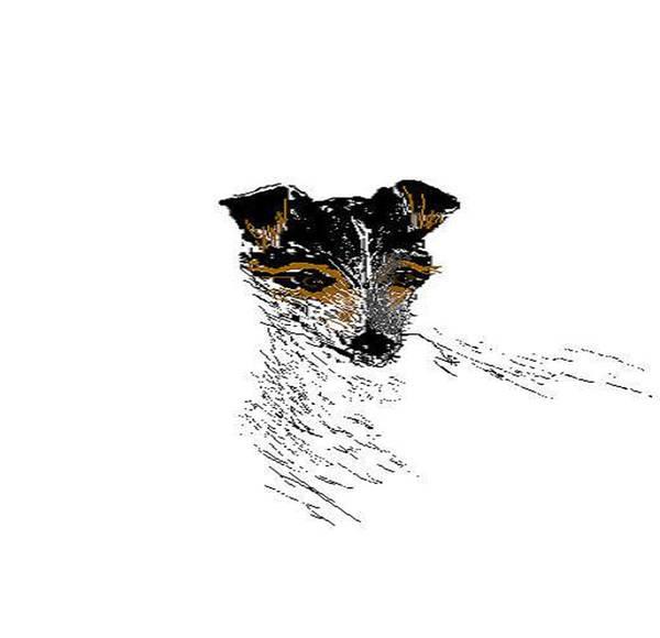 Dogs Poster featuring the digital art Amigo by Carole Boyd