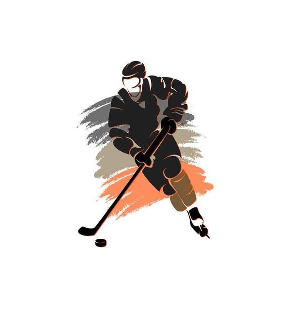 Ducks Poster featuring the photograph Anaheim Ducks Player Shirt by Joe Hamilton