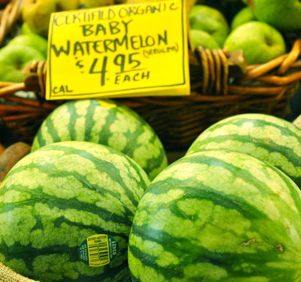 Baby Watermelons Poster featuring the photograph Baby Watermelons by Caroline Reyes-Loughrey