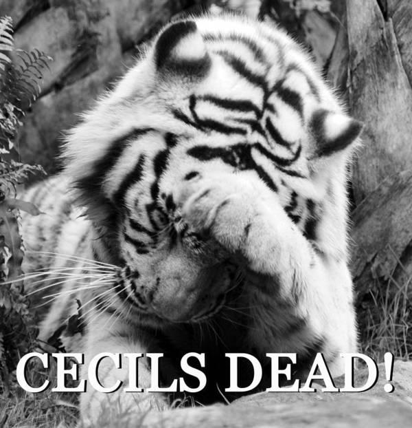 On Learning Of Cecil The Lions Death Poster featuring the photograph Bad News For The Animal Kingdom by David Lee Thompson
