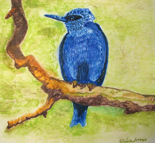 Birds Poster featuring the painting Black As Blue Bird by Patricia Arroyo