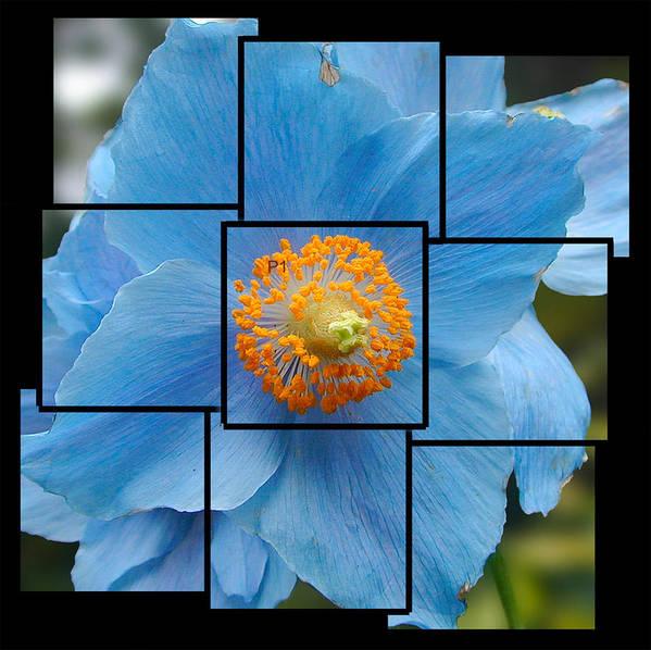 Blue Poster featuring the sculpture Blue Flower Photo Sculpture Butchart Gardens Victoria BC Canada by Michael Bessler