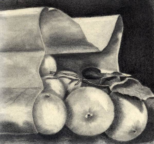 Still Life Poster featuring the drawing Brown Bag by Penny Everhart