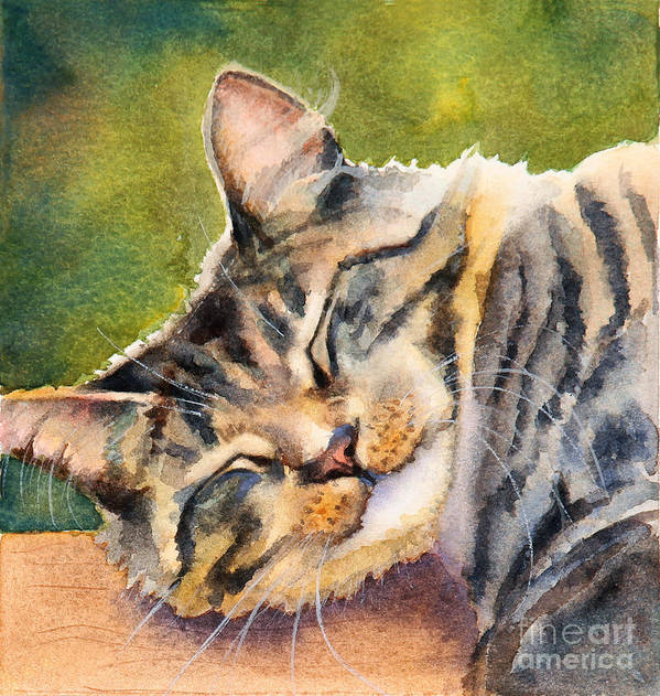 Cat Poster featuring the painting Cat Nap by Bonnie Rinier