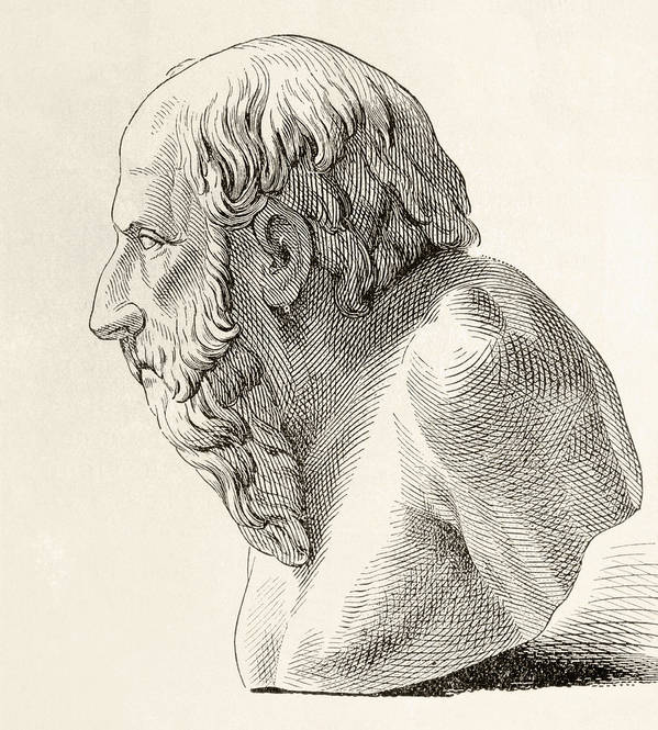 Diogenes Of Sinope Aka Diogenes The Poster
