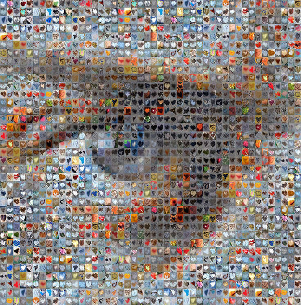 Male Human Eye Comprised Of Hearts Poster featuring the photograph Eye 2 by Boy Sees Hearts
