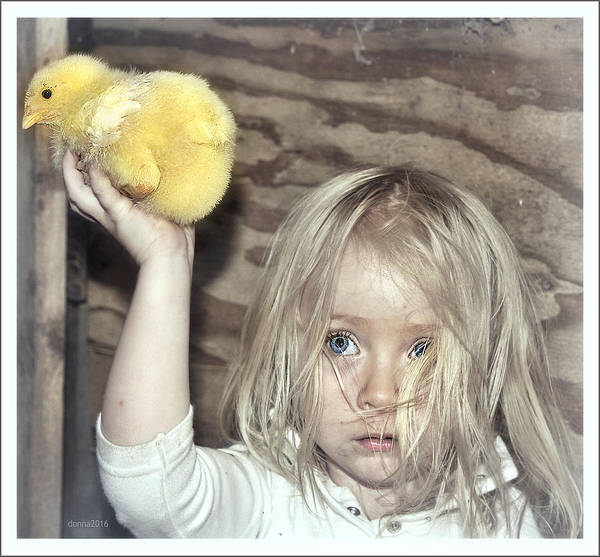 Farm Girl Pride Dirty Honest Strength Angelic Magic Love Life Family Poster featuring the photograph Farm Pride by Donna Brown