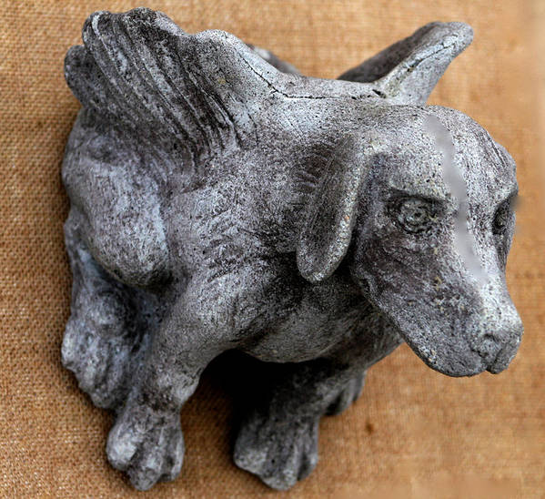 Dog Poster featuring the sculpture Flying Dog Gargoyle by Katia Weyher