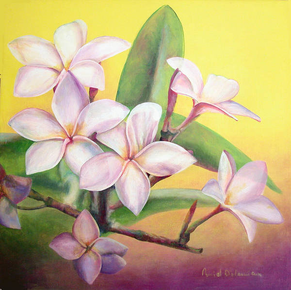 Floral Painting Poster featuring the painting Frangipanier by Muriel Dolemieux