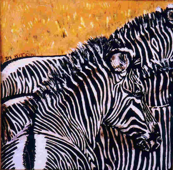 Zebras Poster featuring the painting Grevy Colt by Dy Witt