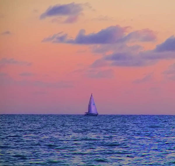 Gulf Poster featuring the photograph Gulf Coast Sailboat by Bill Cannon