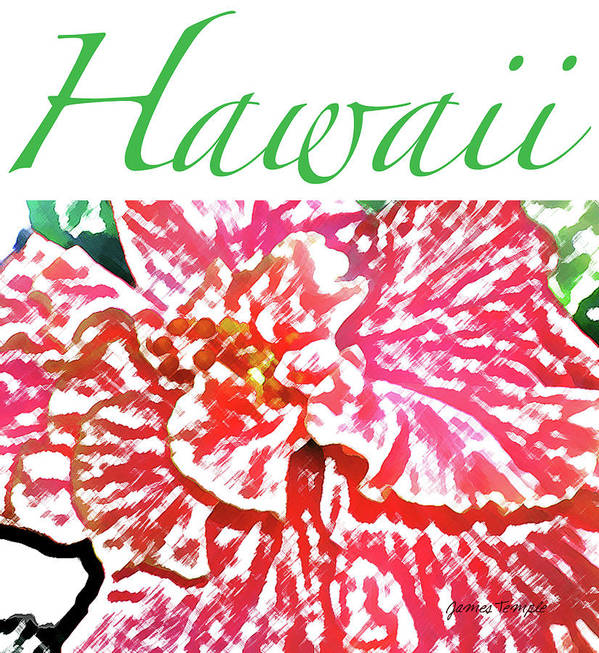Hawaii Poster featuring the digital art Hawaii Blush by James Temple
