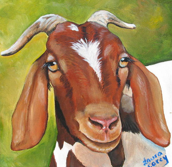 Goat Poster featuring the painting Heloise by Laura Carey