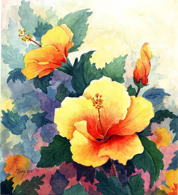 Hibiscus Poster featuring the painting Hibiscus by Colleen Marquis